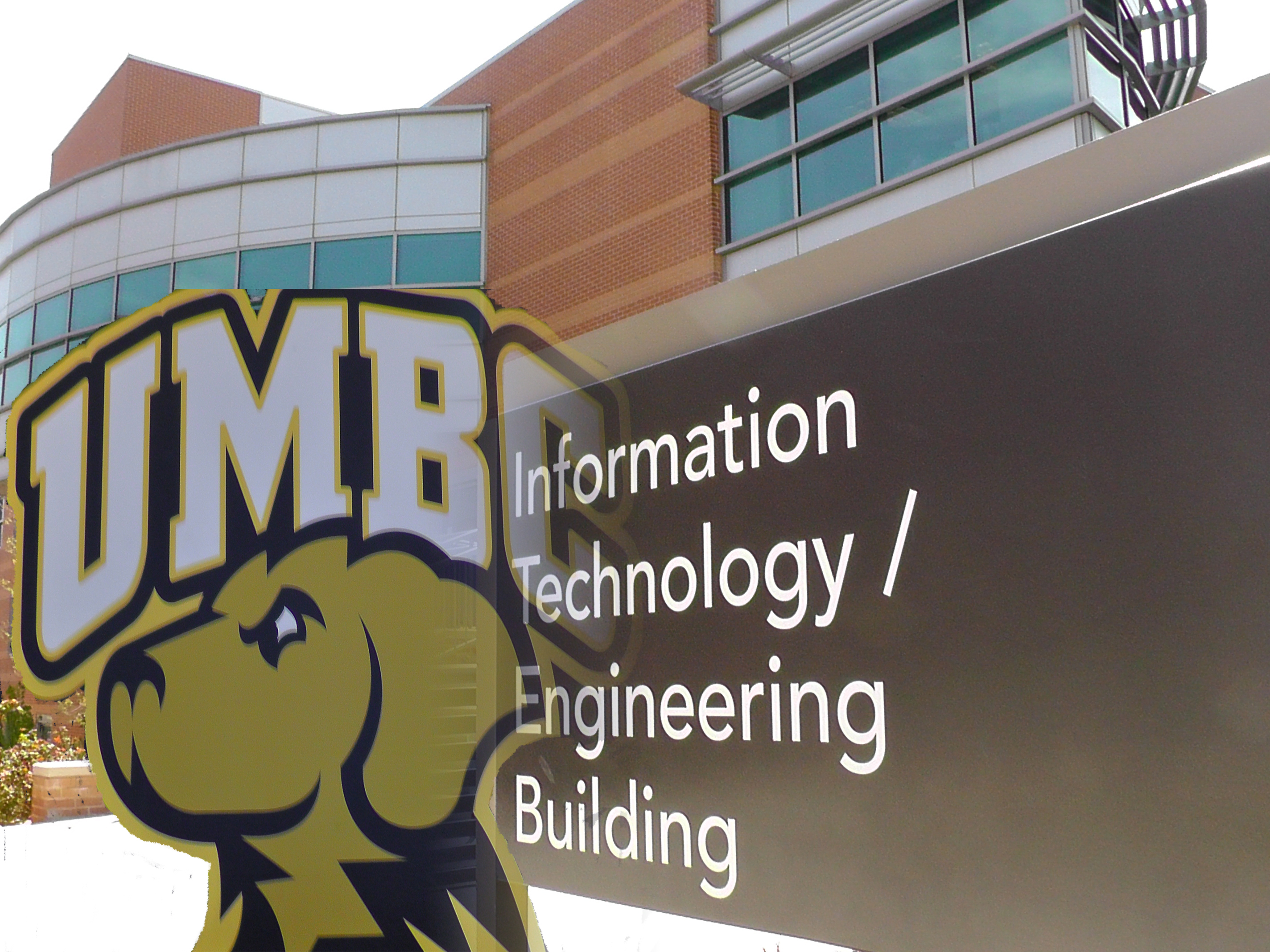 Dog And College Department Of Information Systems Umbc